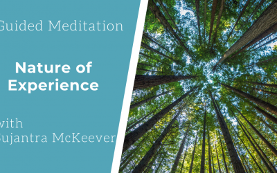 Guided Meditation: The Nature of Experience
