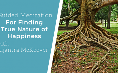Guided Meditation: Finding Happiness